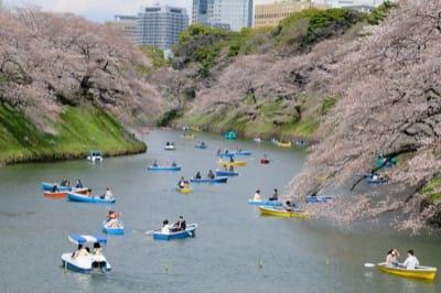 千鳥ヶ淵と桜とボート乗り場