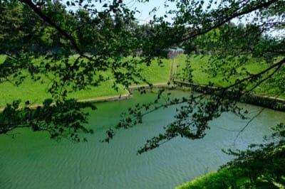 千鳥ヶ淵公園のお堀